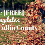 Five {FREE} Play Date Spots in Collin County