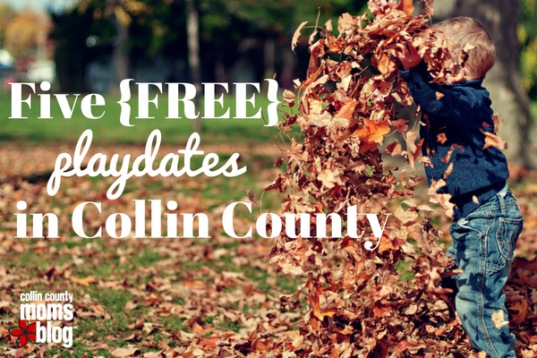 five-freeplay-datesin-collin-county