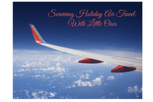 surviving-holiday-air-travel