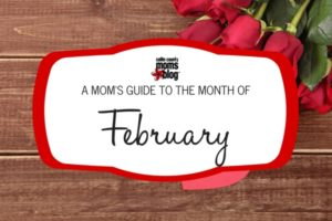 Collin County Moms Blog - February 2017 Guide