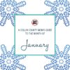 January Guide - Collin County Moms Blog (Featured Graphic)