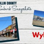 Collin County Suburb Snapshot: Wylie
