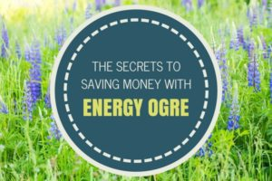 The Secrets To Saving Money with Energy Ogre - Collin County Moms Blog