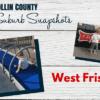 COLLIN COUNTY Suburb Snapshots - WEST FRISCO